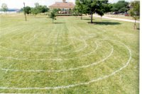 Photo of a labyrinth painted on the grass.
